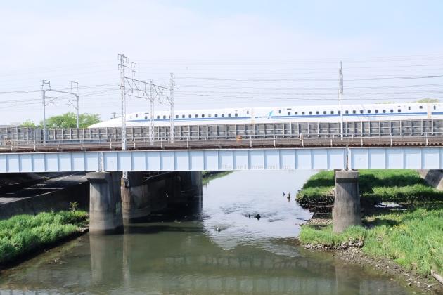 DSCF3670